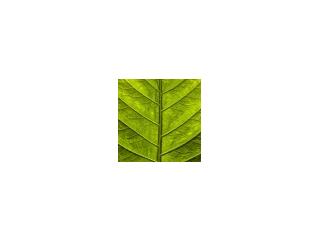 Hoste Milieutechniek B.V.